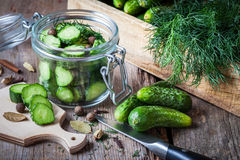 Cucumbers ready for pickling with dill. Royalty Free Stock Photo