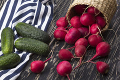Cucumbers and red radishes in a basket . Cucumbers and red radishes in a basket on wooden desk Royalty Free Stock Photo