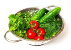 Cucumbers. red tomatoes and green arugula Royalty Free Stock Photos
