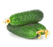 Cucumbers and slices isolated on a white Stock Photography