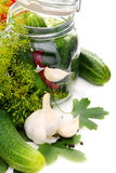 Cucumbers and spices for pickling. Stock Image