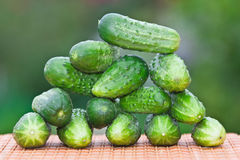 Cucumbers on the table. On a green background Royalty Free Stock Images