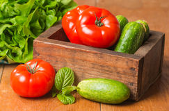 Cucumbers, Tomatoes and Butterhead Lettuce in Wooden Box. Arrangement of Raw  Cucumbers, Tomatoes and Butterhead Lettuce in Wooden Box on Rustic background Stock Photos