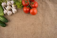 Cucumbers, tomatoes, garlic and dill on the background of old sa Stock Photos