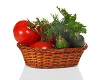 Cucumbers, tomatoes and greens in the basket royalty free stock photos