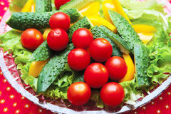 Cucumbers, tomatoes, peppers, lettuce. Cherry tomatoes with delicious slices of cucumber and peppers laid out on lettuce leaves Royalty Free Stock Images