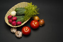 Cucumbers, tomatoes , radishes on a black background. Cucumbers, tomatoes , radishes in basket on a black background Stock Images