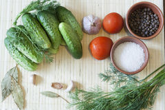 Cucumbers, tomatoes and spices. Cucumbers, tomatoes, spices and herbs on a wooden board stock photos