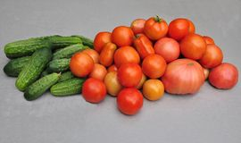 Cucumbers and tomatoes. On a wooden board Royalty Free Stock Image