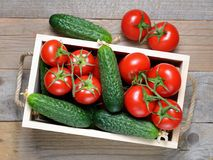 Cucumbers and tomatoes in wooden box Stock Photography