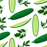 Cucumbers. Vector seamless pattern with ripe cucumbers. Great for design of healthy lifestyle or diet. For wrapping paper, textiles and other food designs.Vector Stock Image