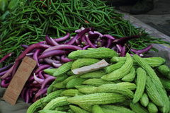 Cucumbers and Vegetables Stock Photos