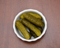 Cucumbers in vinegar. Pot with first pickled gherkins flat Jack in study Royalty Free Stock Photography