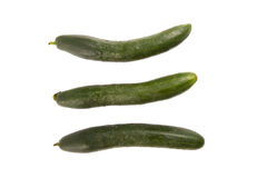 Cucumbers on white background Stock Photography