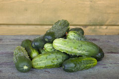 Cucumbers on the wooden background Stock Images