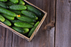 Cucumbers on a wooden background. Cucumbers in a box on a wooden background Stock Image