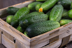 Cucumbers on a wooden background. Cucumbers in a box on a wooden background Royalty Free Stock Images