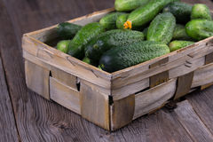 Cucumbers on a wooden background. Cucumbers in a box on a wooden background Royalty Free Stock Image