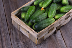Cucumbers on a wooden background. Cucumbers in a box on a wooden background Stock Photo
