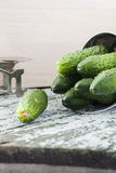 Cucumbers on a wooden background Royalty Free Stock Images