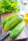 Cucumbers Stock Photography