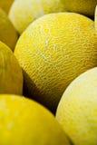 Cucumis melo, melon. Nine pieces of Cucumis melo, melon Stock Photo