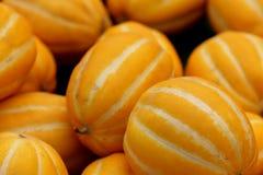 Cucumis melo varietà conomon, melone coreano della stella fotografie stock