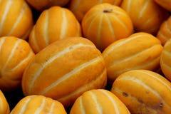 Cucumis melo varietà conomon, melone coreano della stella Fotografia Stock Libera da Diritti
