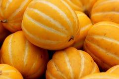 Cucumis melo varietà conomon, melone coreano della stella Immagini Stock