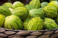 Cucumisanguria, cackrey, kastanjebruine komkommer, het Westen Indische augurk en het Westen Indische pompoen Deco-fruit gele en g stock afbeelding