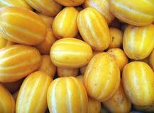 CucumisTrigonus tropisk frukt royaltyfria bilder
