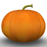 Cucurbita maxima Royalty Free Stock Images