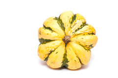 Cucurbita in yellow and green Royalty Free Stock Photography
