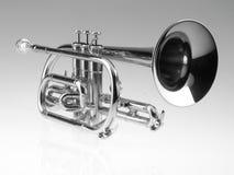 Cucurucho de la trompeta Fotografía de archivo