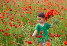 CuCute child girl in poppy field royalty free stock photo