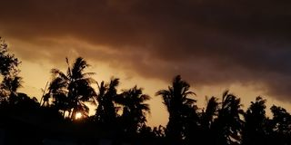 Cud folujący klimat fotografia stock