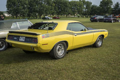 Cuda Royalty Free Stock Photos