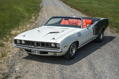 Cuda convertible Royalty Free Stock Photo