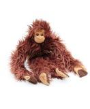 Cuddly monkey Royalty Free Stock Photography