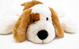 Cuddly soft toy puppy Stock Images