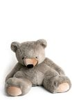 Cuddly toy. A big teddy bear and a white background Royalty Free Stock Image