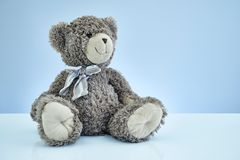 Cuddly Toy Bear Stock Image