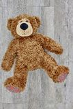 Cuddly Toy Bear Royalty Free Stock Image