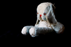 Cuddly toy Royalty Free Stock Image