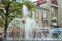 Cudowna fontanna w pięknym mieście Ivano-Frankivsk Ukraina Obraz Royalty Free