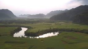 Cudowna spokojna rzeka odbija jaskrawego słońce i zielonych drzewa zdjęcie wideo