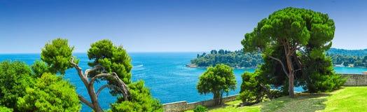Cudowne sosny przy linii brzegowej morzem śródziemnomorskim Romantyczny magiczny Zdjęcie Stock
