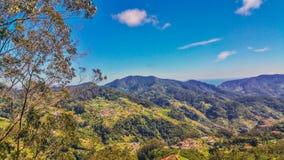 Cudowni krajobrazy Od madery Fotografia Stock