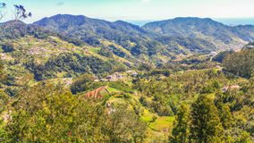 Cudowni krajobrazy Od madery Obrazy Royalty Free