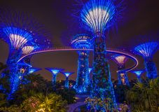 Cudowni ogródy zatoką, Singapur fotografia royalty free